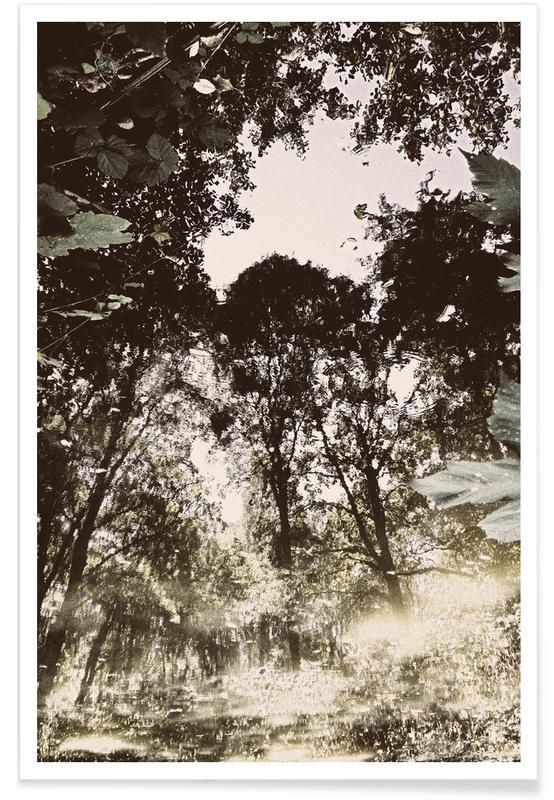 Wälder, Ozeane, Meere & Seen, Berlin, Tiergarten 1 -Poster