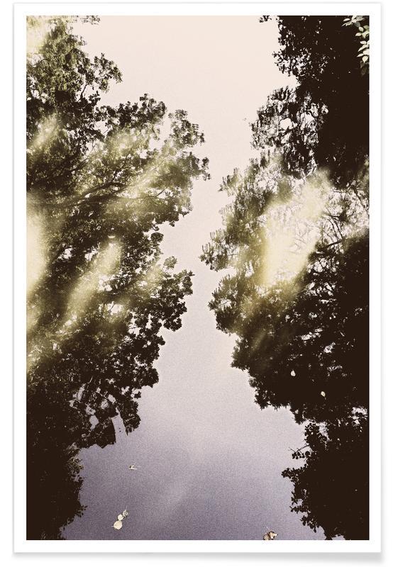 Wälder, Ozeane, Meere & Seen, Berlin, Tiergarten 3 -Poster