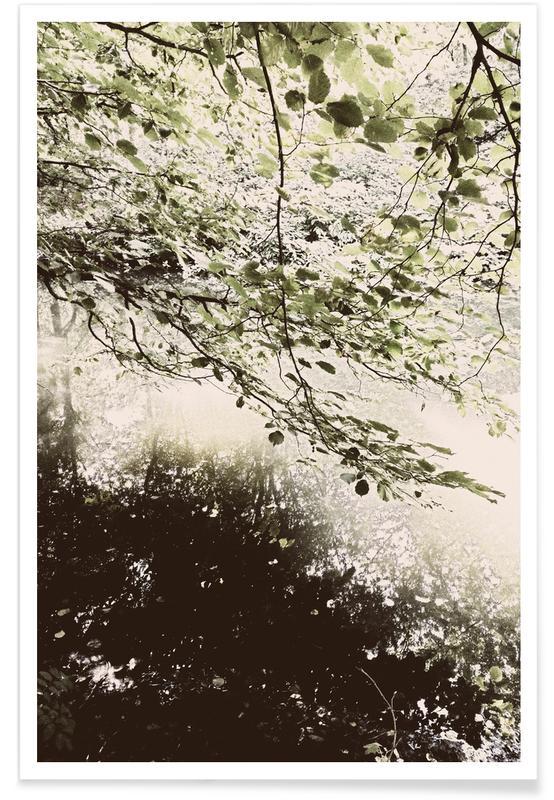 Wälder, Ozeane, Meere & Seen, Berlin, Tiergarten 5 -Poster