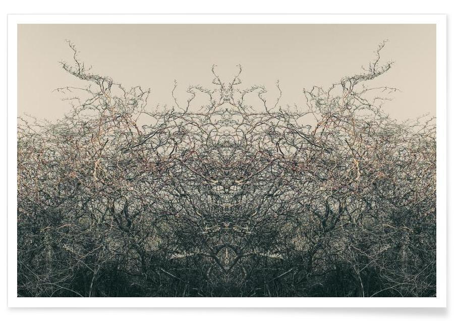 Paysages abstraits, Nature´s soul affiche