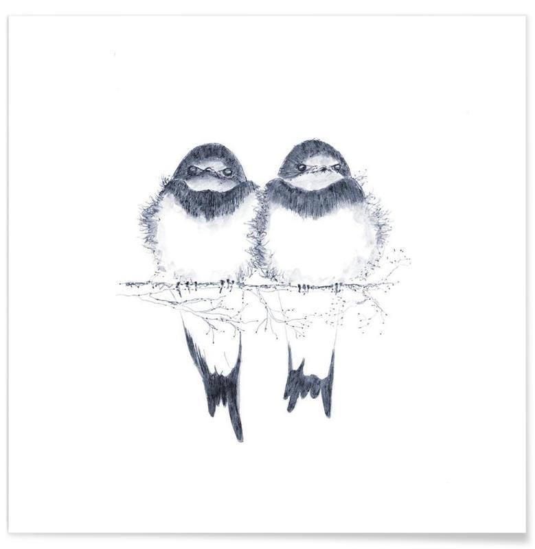 Noir & blanc, Birds affiche