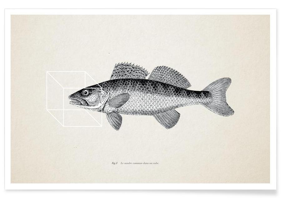 Poissons, Fish#1 affiche