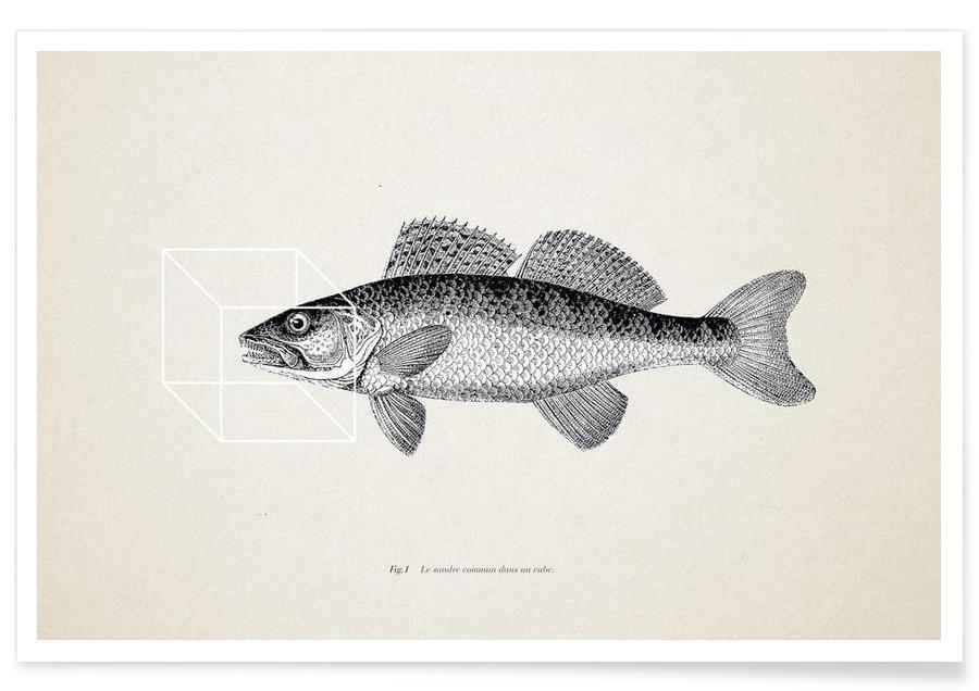 Fisk, Fish#1 Plakat