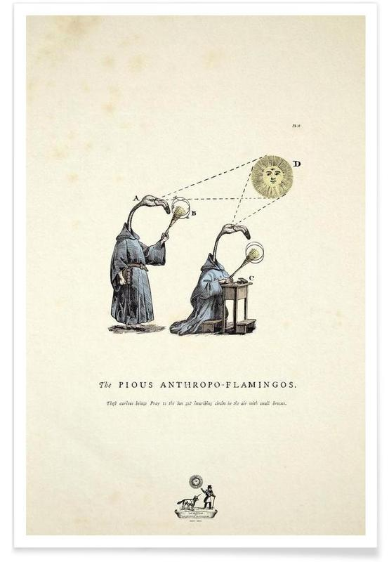 Flamants roses, The pious anthropo-flamingos affiche