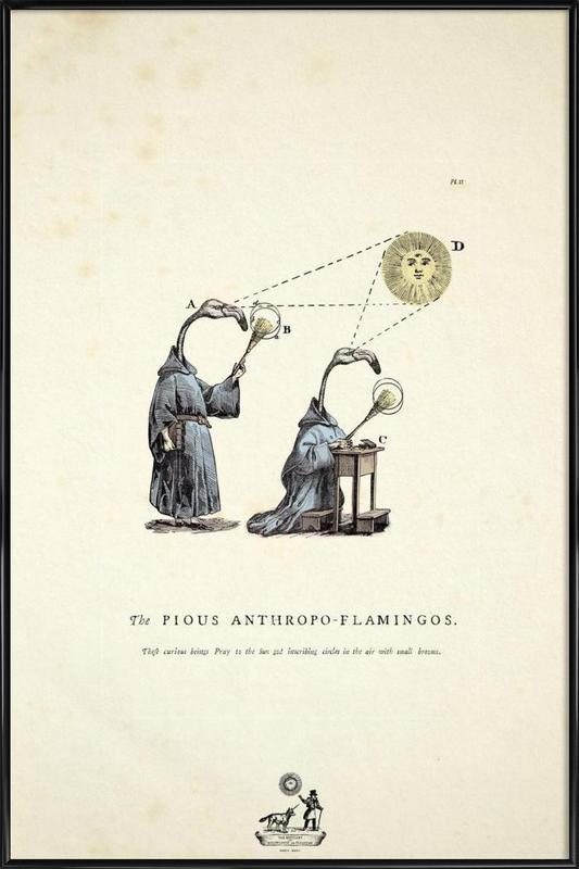 The pious anthropo-flamingos -Bild mit Kunststoffrahmen