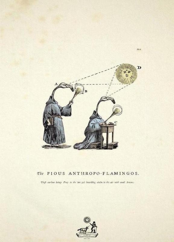 The pious anthropo-flamingos -Leinwandbild