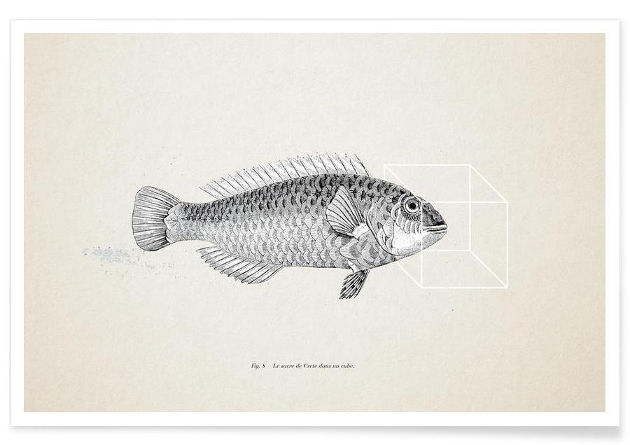 Poissons, Fish#2 affiche