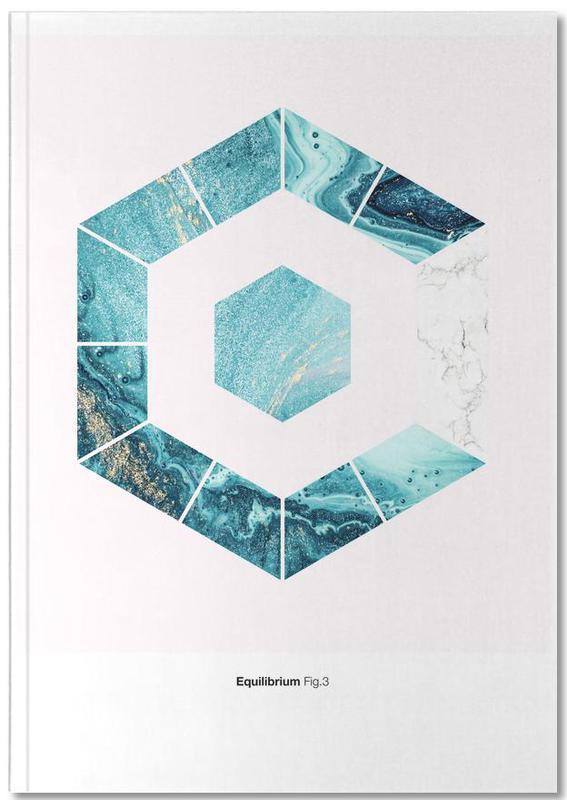 Equilibrium 3 Notebook