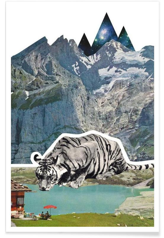 Tigres, Tiger affiche