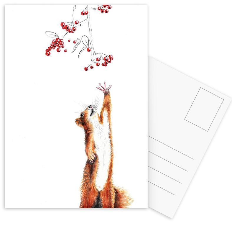 Squirrel -Postkartenset