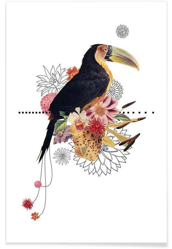 Toucans, Toucan affiche