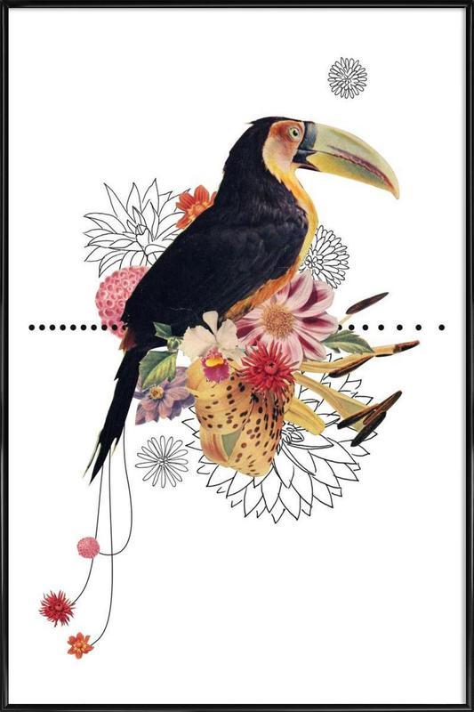 Toucan ingelijste poster
