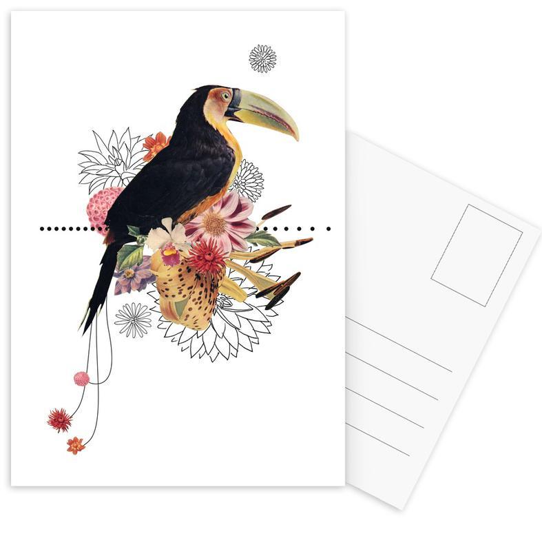 Toucans, Toucan Postcard Set