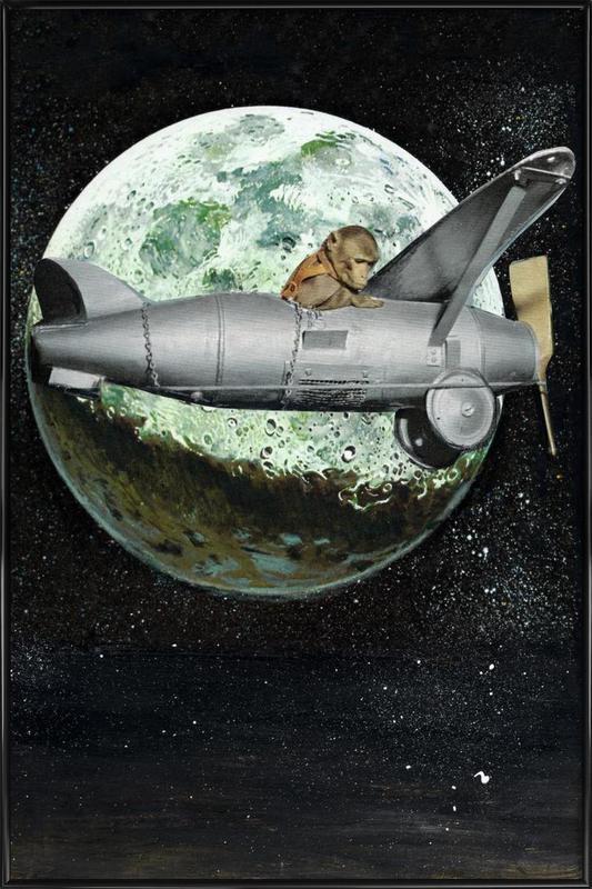 Space Monkey ingelijste poster