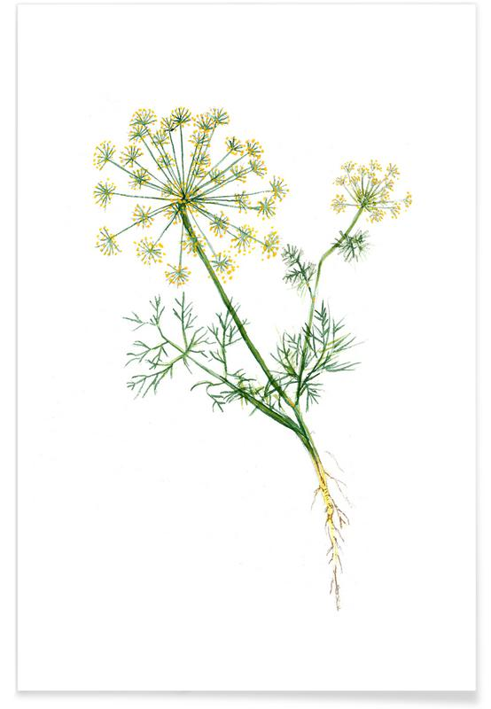 Dill -Poster