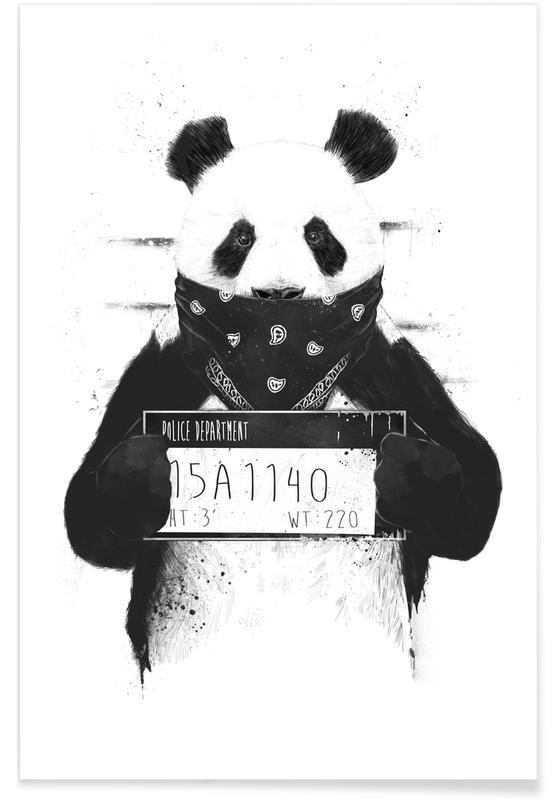 Black & White, Pandas, Funny, Bad Panda Poster