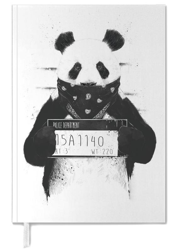 Grappig, Panda's, Zwart en wit, Bad Panda agenda