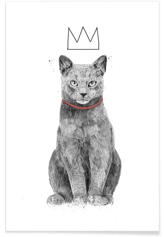 Chats, King Of Everything affiche