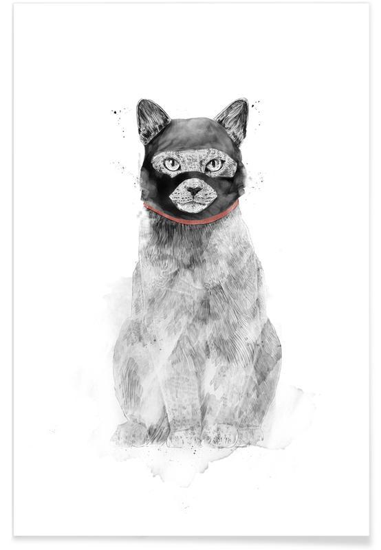 Grappig, Katten, Masked Cat poster