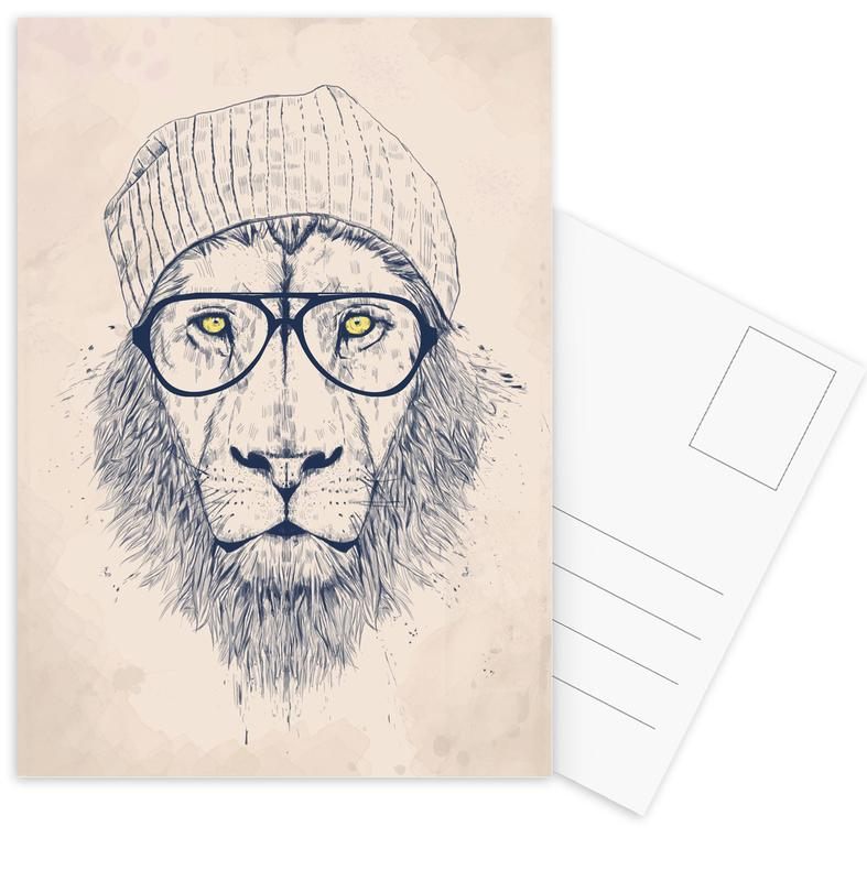 Cool lion Postcard Set