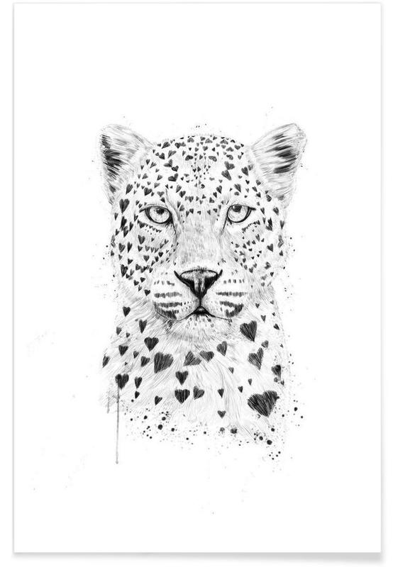 Schwarz & Weiß, Leoparden, Lovely leopard -Poster