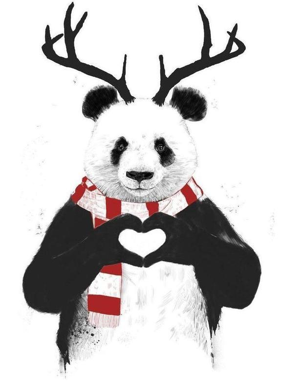 Rudolph Panda Canvas Print