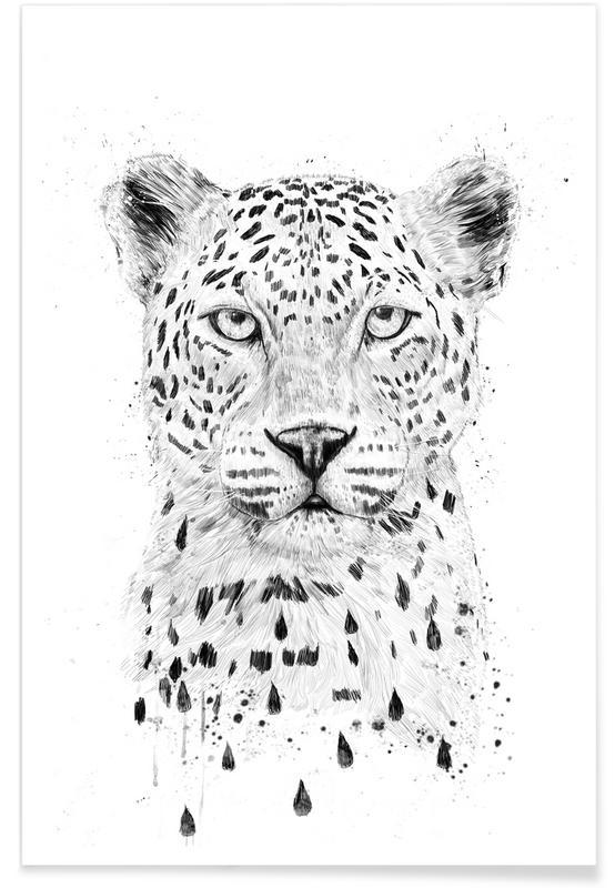 Schwarz & Weiß, Leoparden, Raining Again -Poster