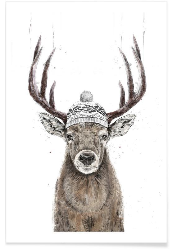 Christmas, Deer, Reindeer Poster