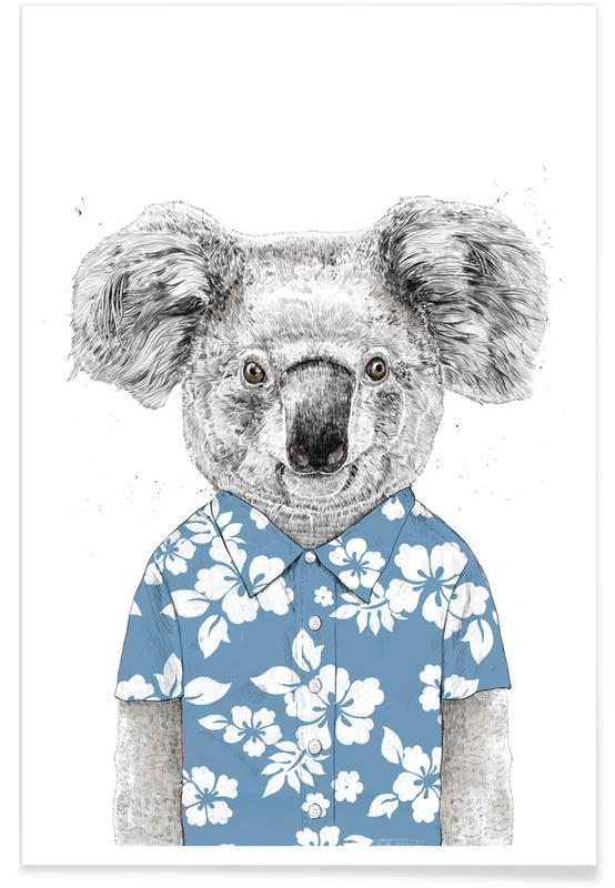 Koalas, Summer Koala Blue affiche