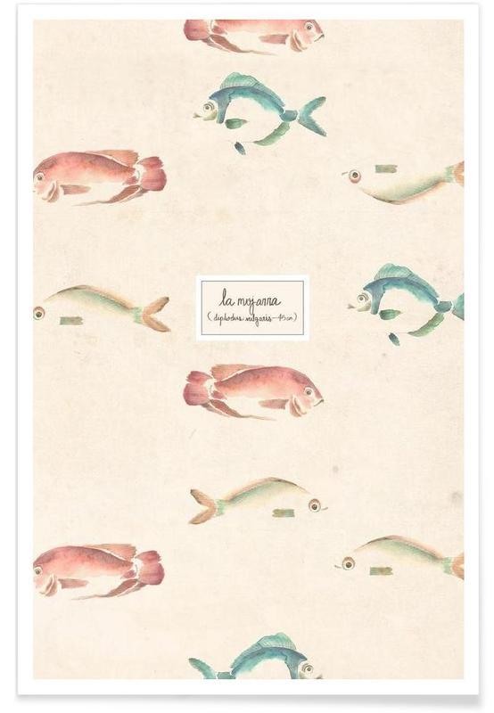 Poissons, Las Mojarras Vert ( Poster) affiche