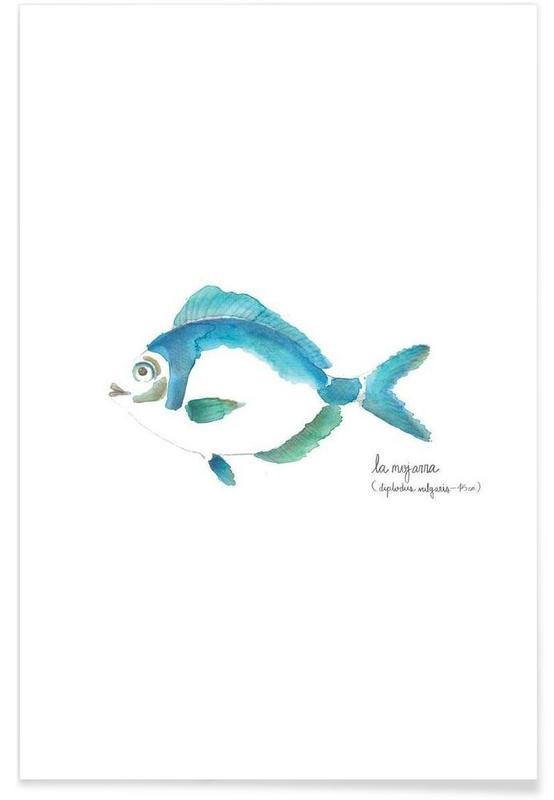 Vissen, La Mojarra Azul ( blue crappie) poster