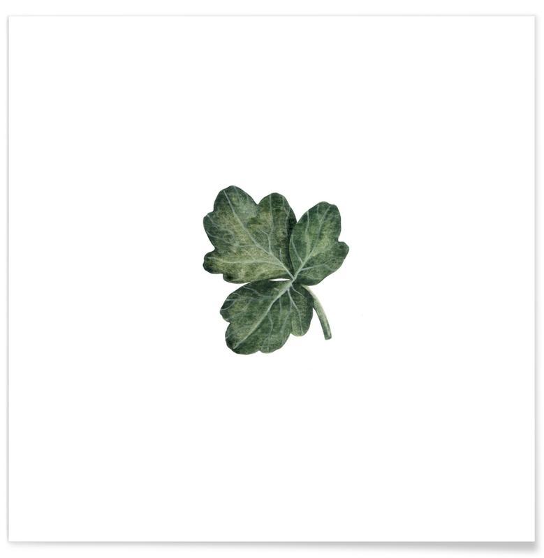 Leaves & Plants, Shamrock Poster