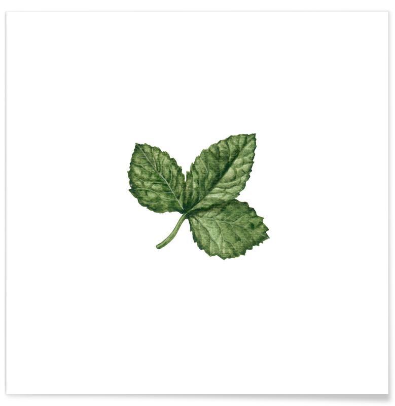 Bladeren en planten, Strawberry Leaf poster