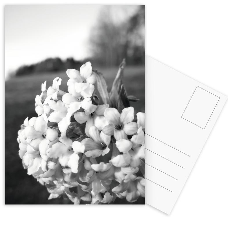Dreamy -Postkartenset