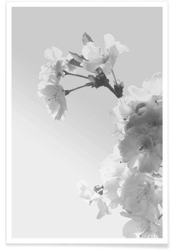 Zwart en wit, Spring Blossom poster