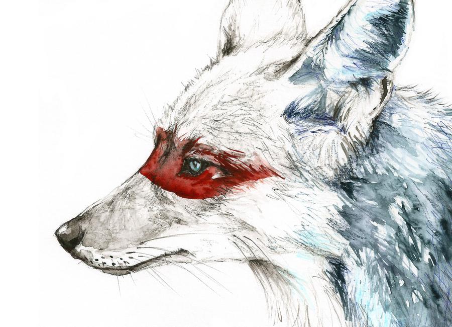Coyote -Leinwandbild