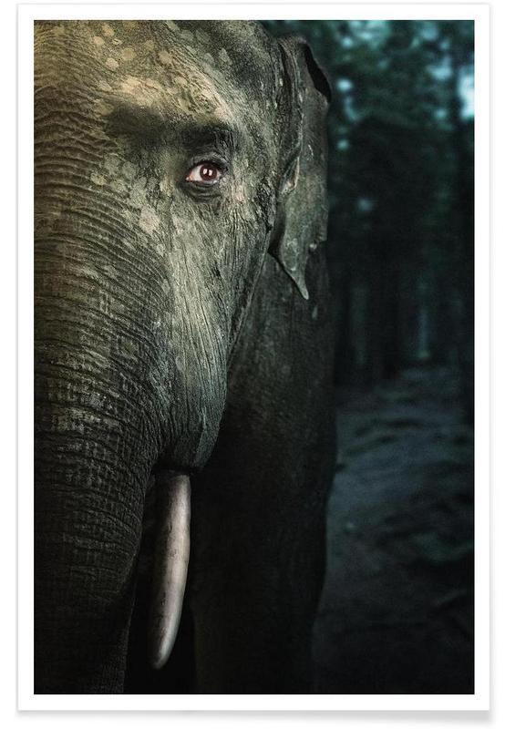 Éléphants, Wir sind Tiere - Elefant affiche