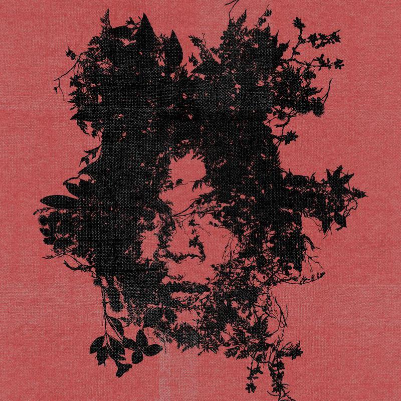 Basquiat -Acrylglasbild