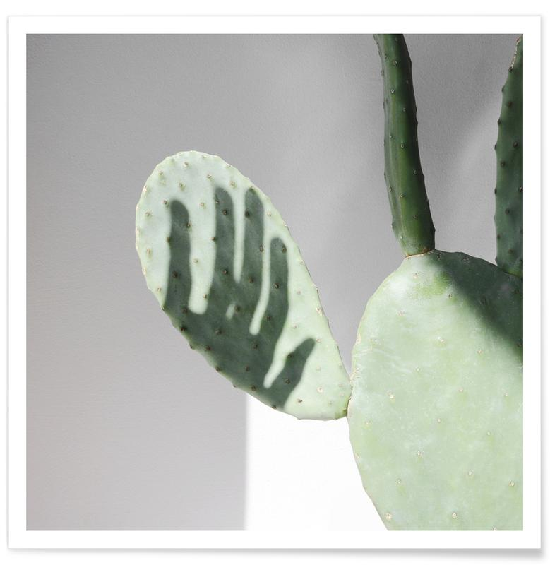 , Hello Cactus Poster