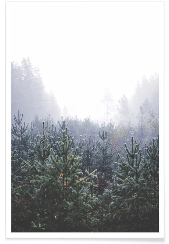 Noël, Palmiers, Misty Forest affiche
