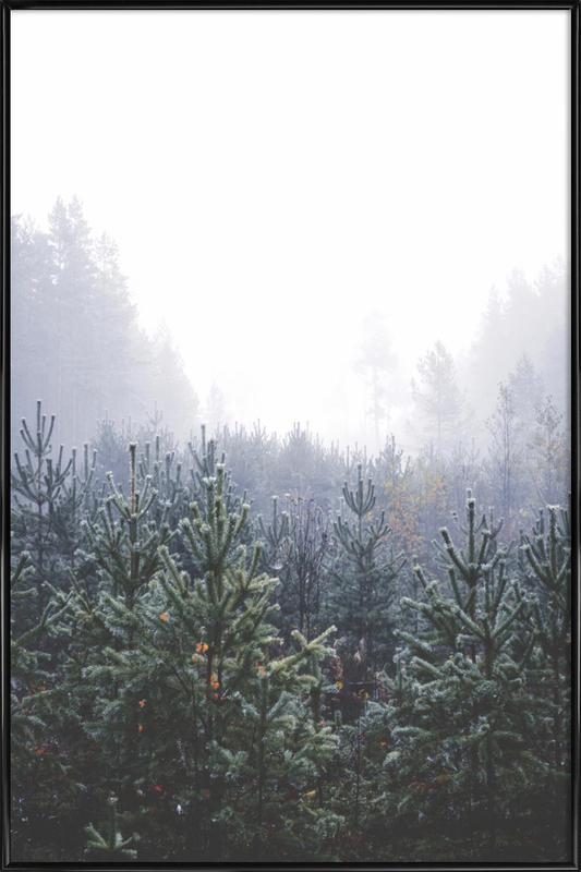 Misty Forest -Bild mit Kunststoffrahmen