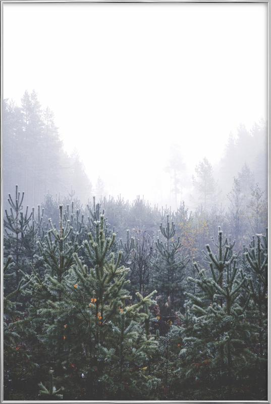 Misty Forest Poster in Aluminium Frame