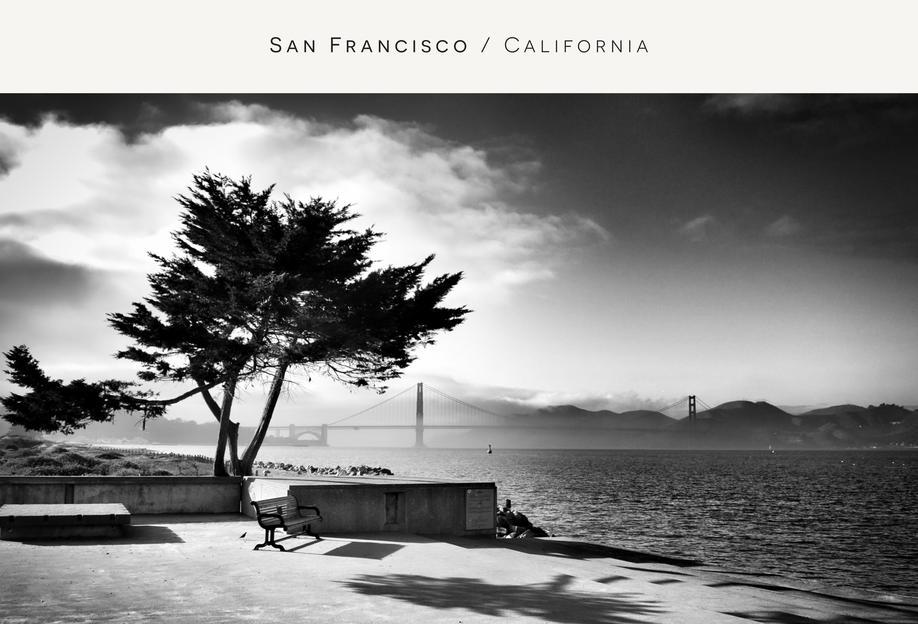 San Fransisco B&W -Alubild