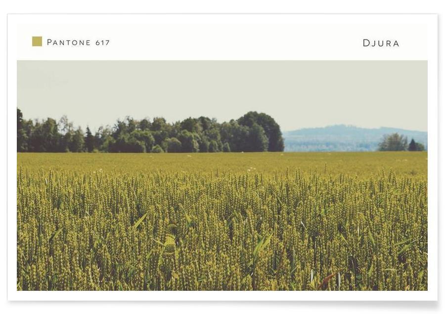 Paysages abstraits, Djura Pantone 617 affiche