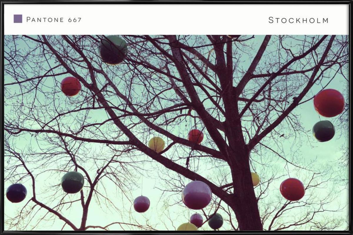 Stockholm Pantone 667 -Bild mit Kunststoffrahmen