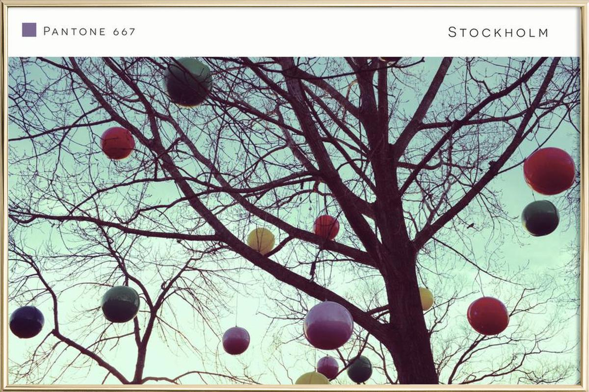 Stockholm Pantone 667 -Poster im Alurahmen