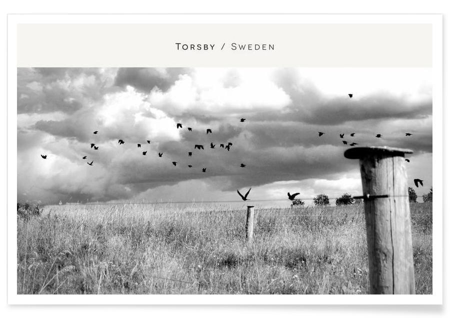 Noir & blanc, Torsby B&W affiche