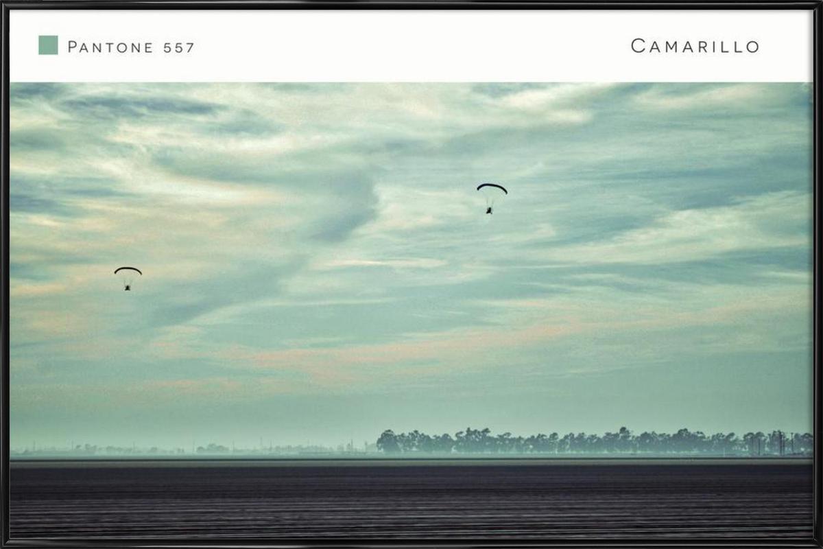 Camarillo Pantone 557 Framed Poster