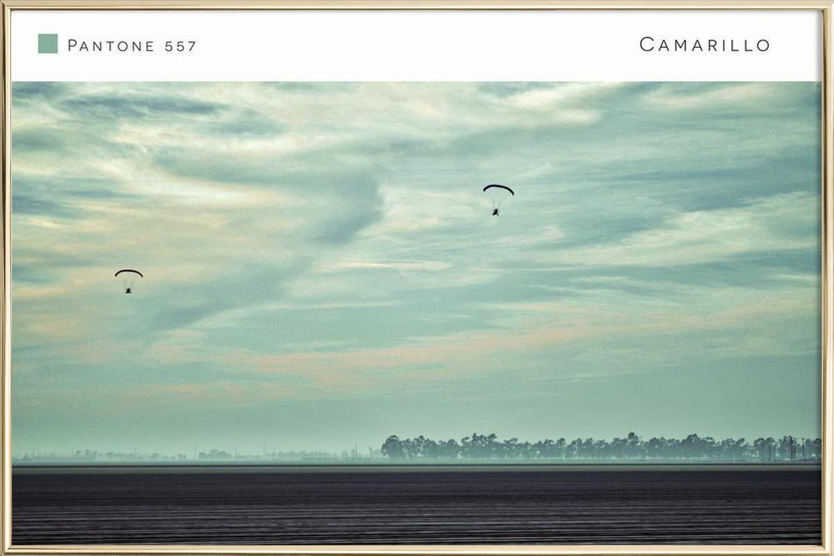 Camarillo Pantone 557 Poster in Aluminium Frame