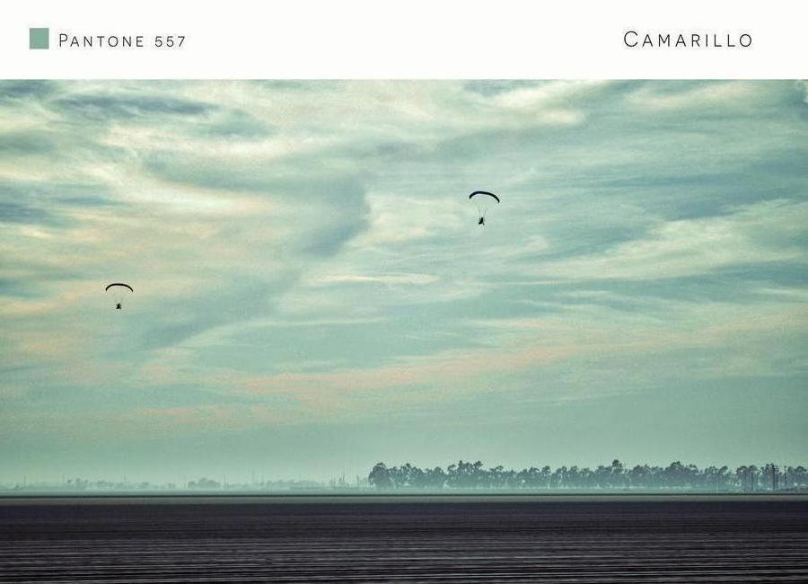 Camarillo Pantone 557 canvas doek